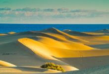 Дешевые билеты из Петербурга на остров Гран-Канария  — 11900₽ туда-обратно