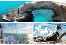Дешевые авиабилеты на Кипр в апреле от 8600₽ туда-обратно