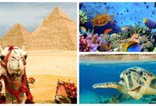 Дождались! Из Москвы в Египет с багажом от 14700 рублей туда-обратно! (с октября по март)