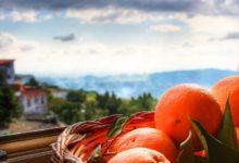 Посмотреть Рим и отведать сицилийских апельсинов! Из Москвы в Рим и на Сицилию за 8900₽ за все билеты!